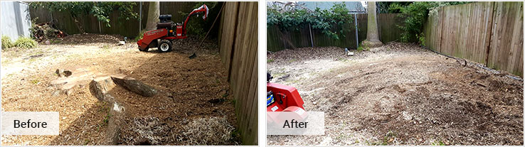 Stump Grinding and Removal Sydney